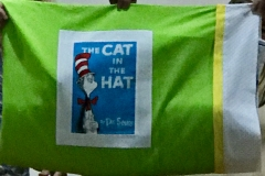 Diane-Karraker_Pillowcase-for-Sleeping-w-Dr-Seuss